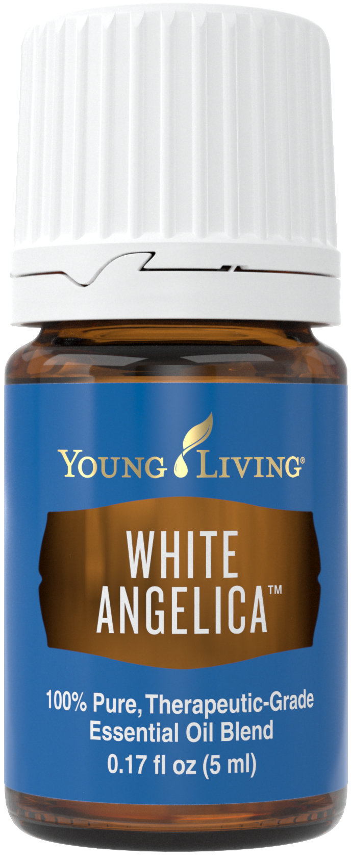 White Angelica